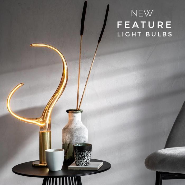 Feature Light Bulbs