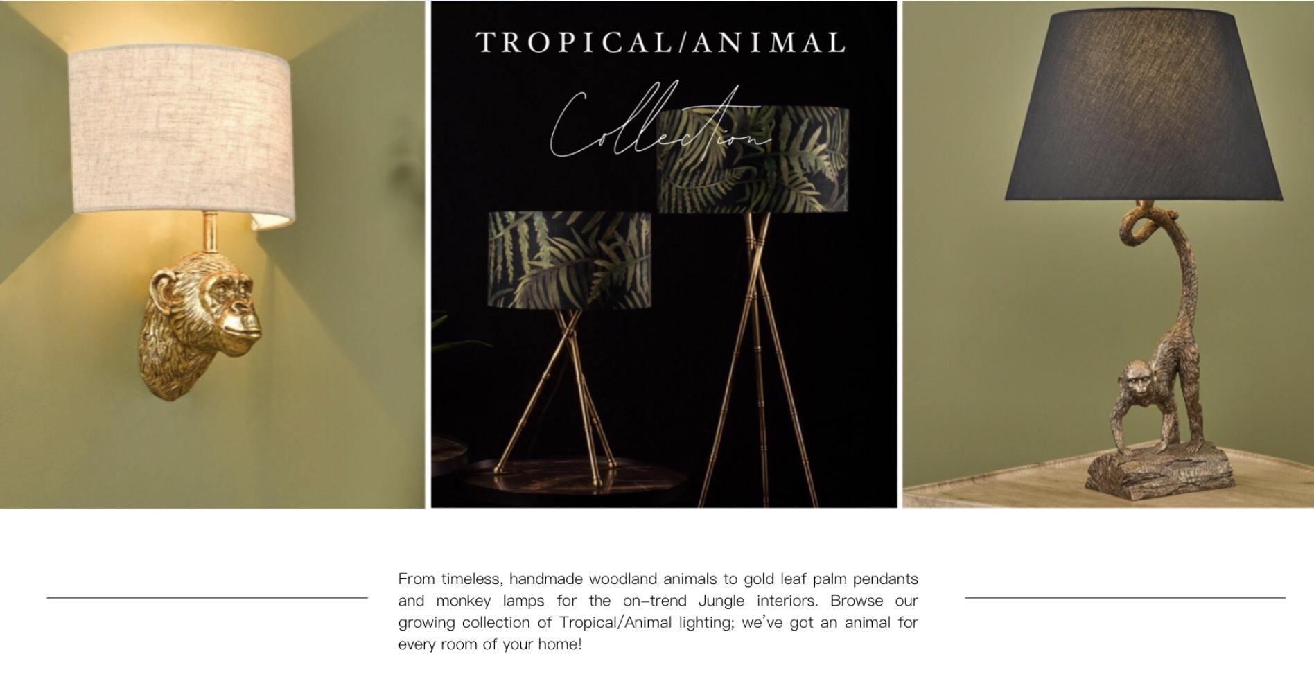 Tropical/Animal Lighting