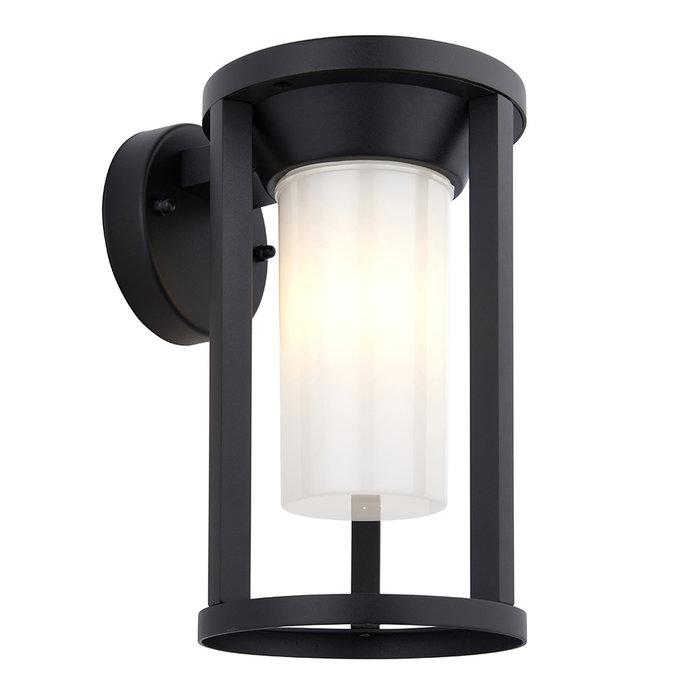 Braden - Exterior LED Wall Light