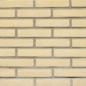 Wienerberger gevelstenen vormbak w.f. ivoor GS-1170 € 0,40 per stuk