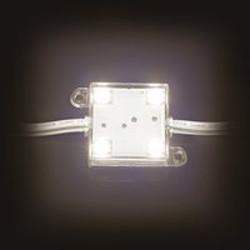 4x Power LED warmwit