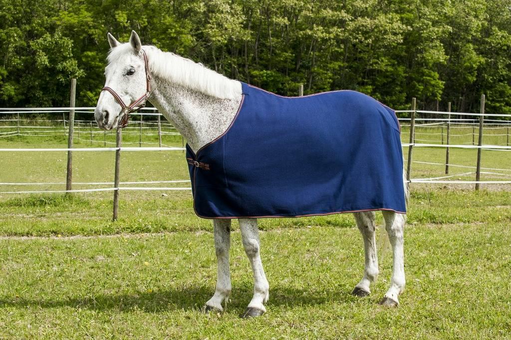Fleece rug First Zweetdeken