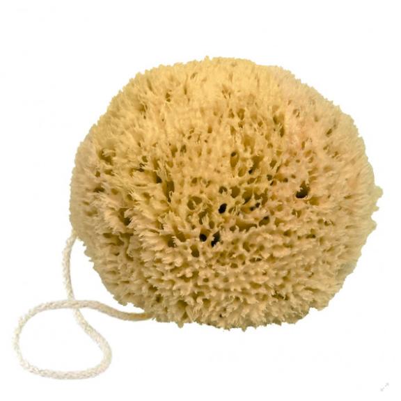 Natuurlijke spons met koord-1