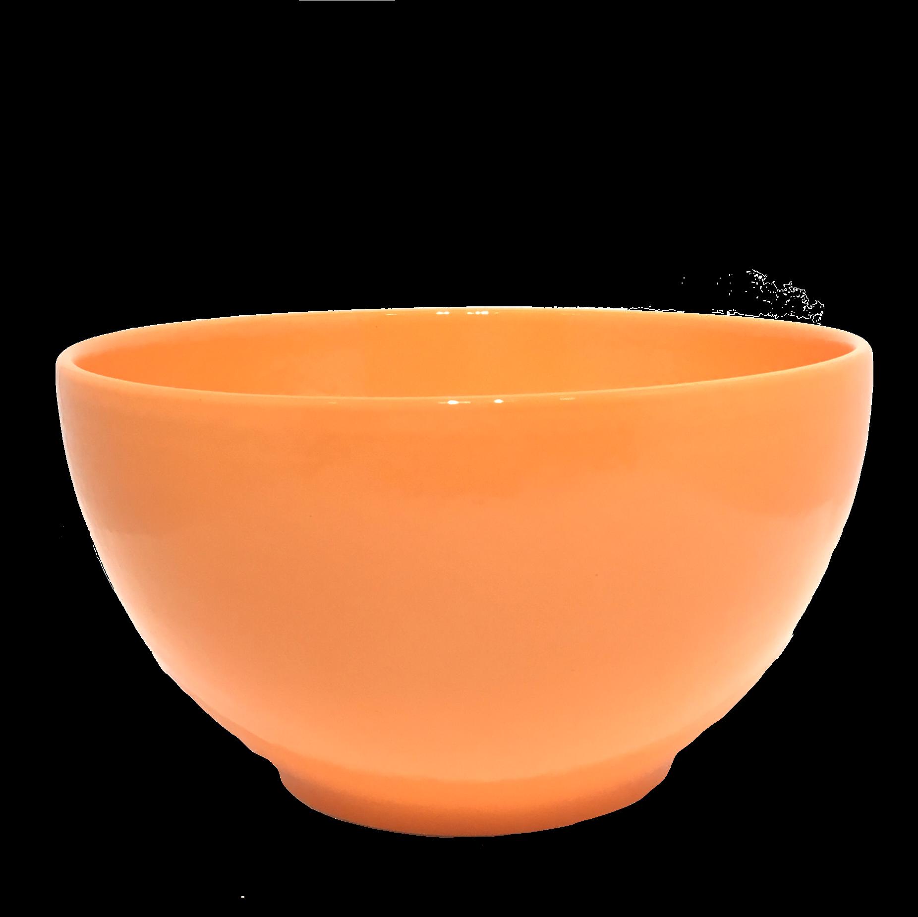 Slakom tulipe-3