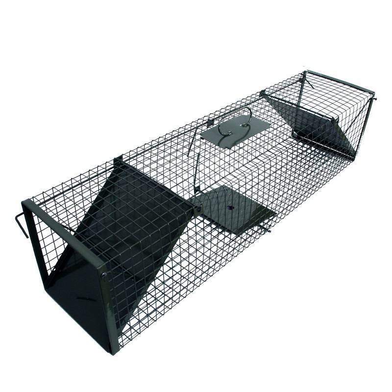 Cage Trap