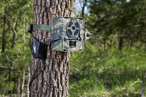 Primos Security case for Primos Proof cams