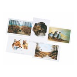 Frankonia Postcard set 5 pcs. Wildmotive