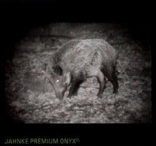 Jahnke DJ-8 NSV Kompakt 1x56 Premium Onyx