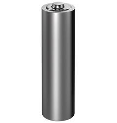 8 AA Alkaline Batterijen