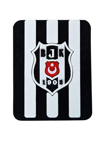 BJK es54 magnet 06
