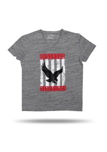 6717147 jr T-shirt gri