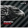 BJK TARAFTAR MARŞ CD