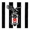 Beşiktaş  serviettes en papier 16 pcs. 33 * 33