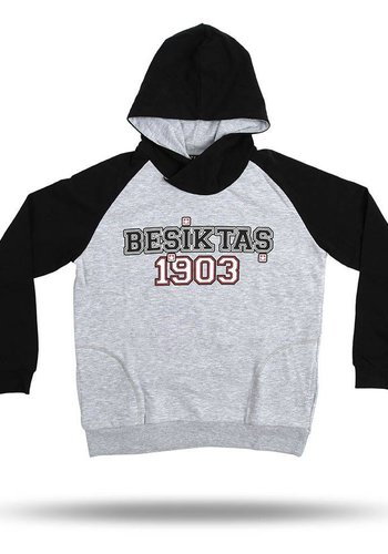 Beşiktaş kids Raglan hooded sweater 6818204