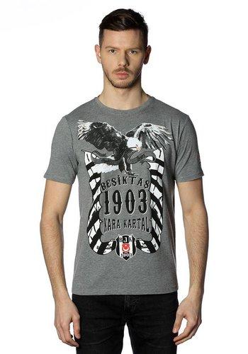 Beşiktaş mens t-shirt 7818131