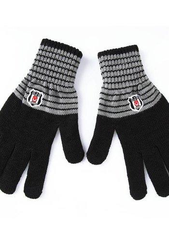 Beşiktaş Handschuhe 10