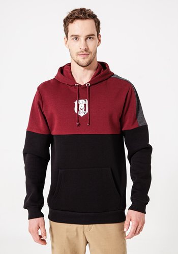 Beşiktaş Colorblock Hooded Sweater Heren 7920218