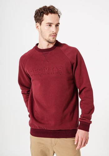 Beşiktaş Sweater Heren 7920205