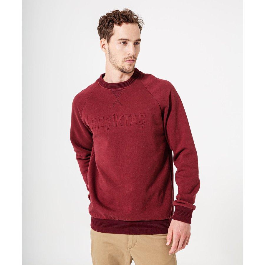 Beşiktaş Mens Sweater 7920205