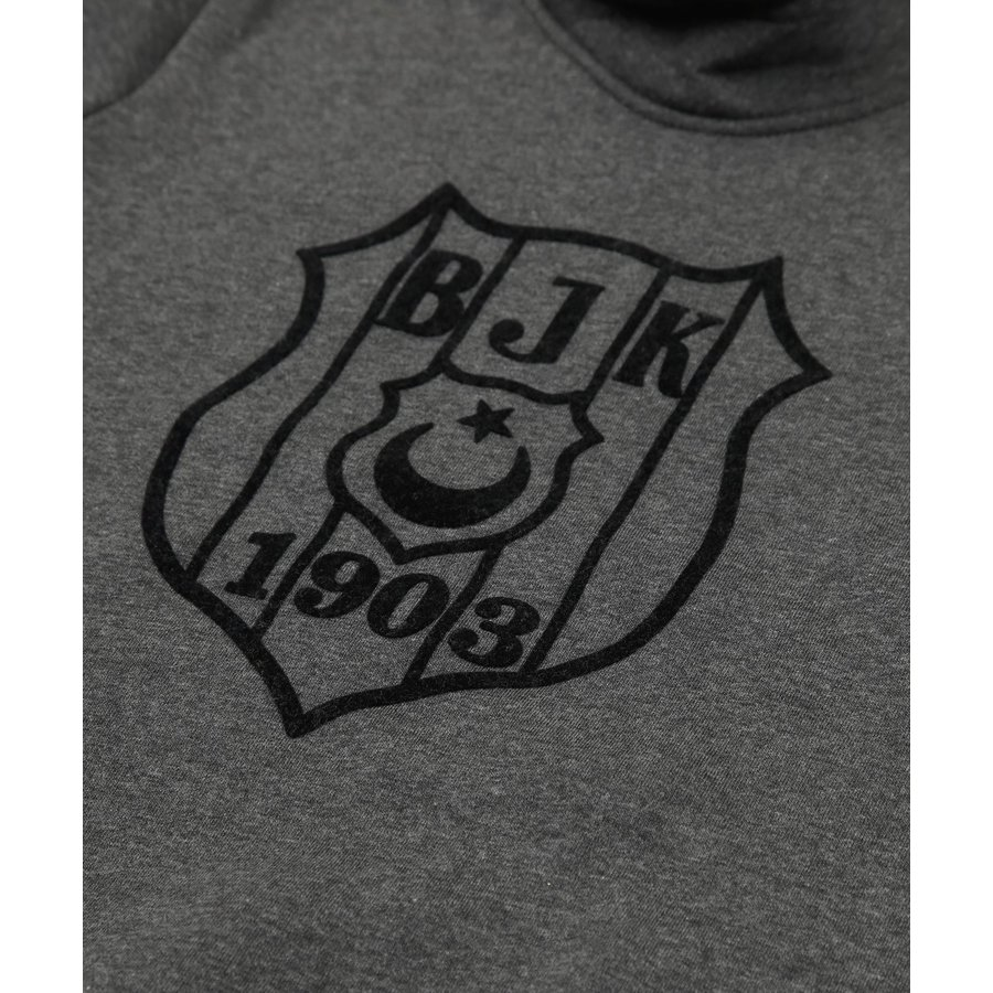 Beşiktaş Kids Logo Hooded Sweater 6920221