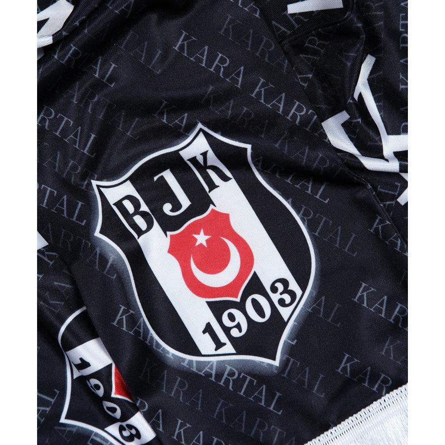 Beşiktaş Satijnsjaal 10