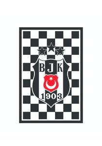 Beşiktaş Karierte 3 Sternefahne 200*300