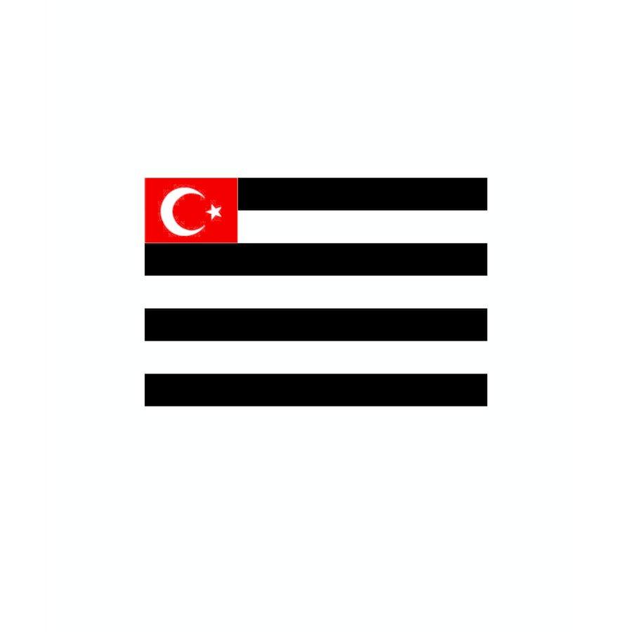 Beşiktaş Gestreept vlag 70*105