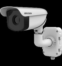 HikVision DS-2TD2336