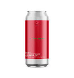 Other Half - All Citra Everything 44cl