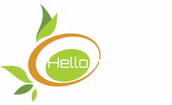 Hello Meat: Barbecue - Traiteur - Vers vlees - vis