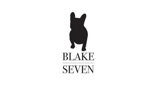 BLAKE SEVEN