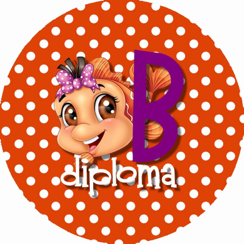 "Button ""Diploma B met vis"""