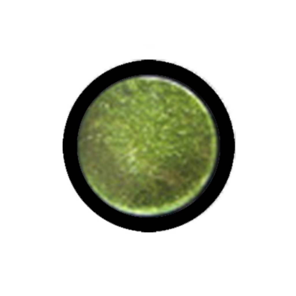 Glitter voor glittertattoo (geel groen)