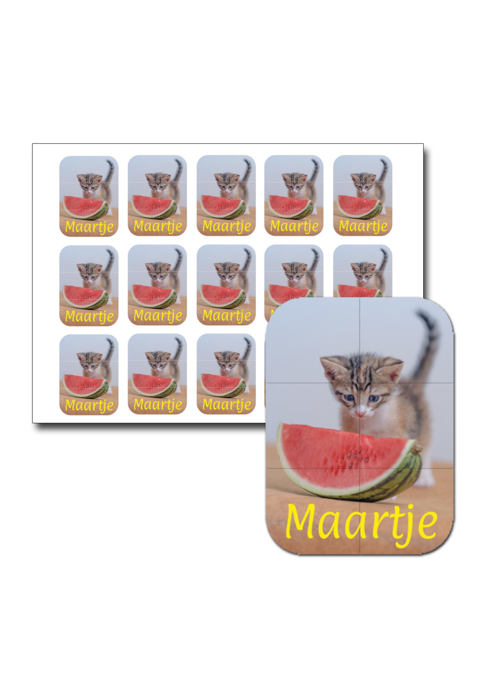 Naamsticker poes meloen - 45 stuks