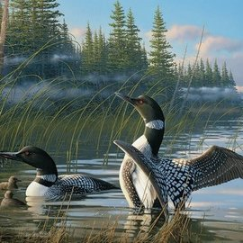 Cobble Hill Cobble Hill Common Loons (1000 stukjes)