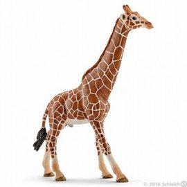 Schleich Schleich 14749 Giraf mannetje