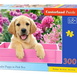 Castorland Castorland puzzel Labrador puppy in roze doos (300 stukjes)