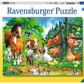 Ravensburger Ravensburger puzzel Dierenbijeenkomst (100 XXL stukjes)
