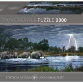 Heye Heye panorama puzzel Herd elephants (2000 stukjes)