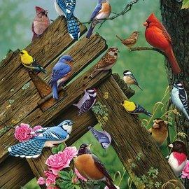 Cobble Hill Cobble Hill Birds of the Forest (1000 stukjes)