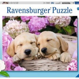 Ravensburger Ravensburger puzzel Schattige hondjes in mand (300 XXL stukjes)
