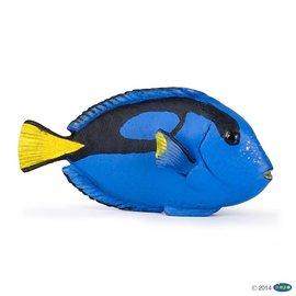 Papo Papo Tropische vis