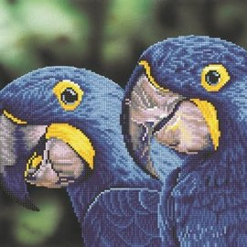 Diamont Dotz Diamond dotz - Blue Hyacinth Macaws