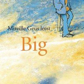 Boek Big (luisterboek, 3 CD's)