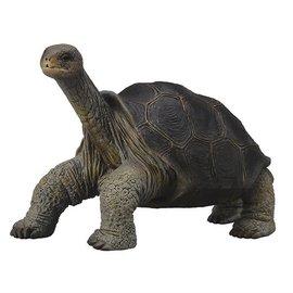 Collecta Collecta Galapagos reuzenschildpad