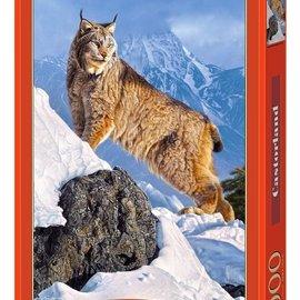 Castorland Castorland puzzel Sobere klim (1000 stukjes)
