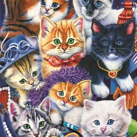 Bluebird puzzel Kittens in Closet (1000 stukjes)
