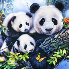 Bluebird Bluebird puzzel Panda Family (1000 stukjes)
