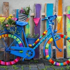 Bluebird Bluebird puzzel My Beautiful Colorful Bike (1000 stukjes)