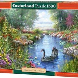 Castorland Castorland puzzel Black Swans (1500 stukjes)